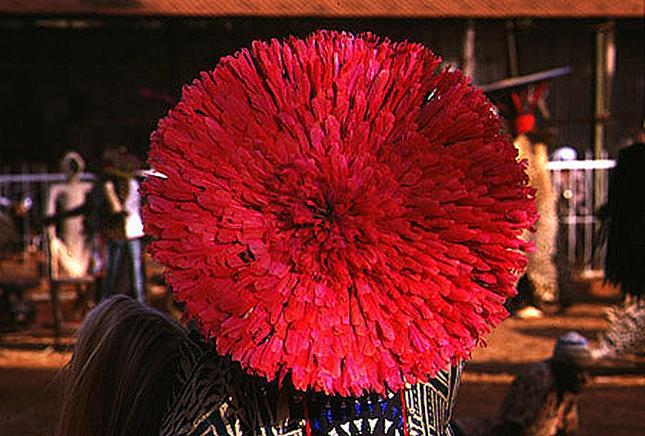 Bamileke_feather_headdress-645x436