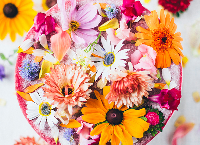 edible-flower-cake
